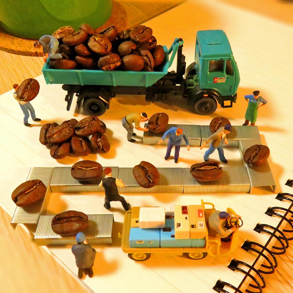 ここはコーヒー工場!ホッチキスコンベアで品質管理を行い良質なコーヒー豆をお届けします