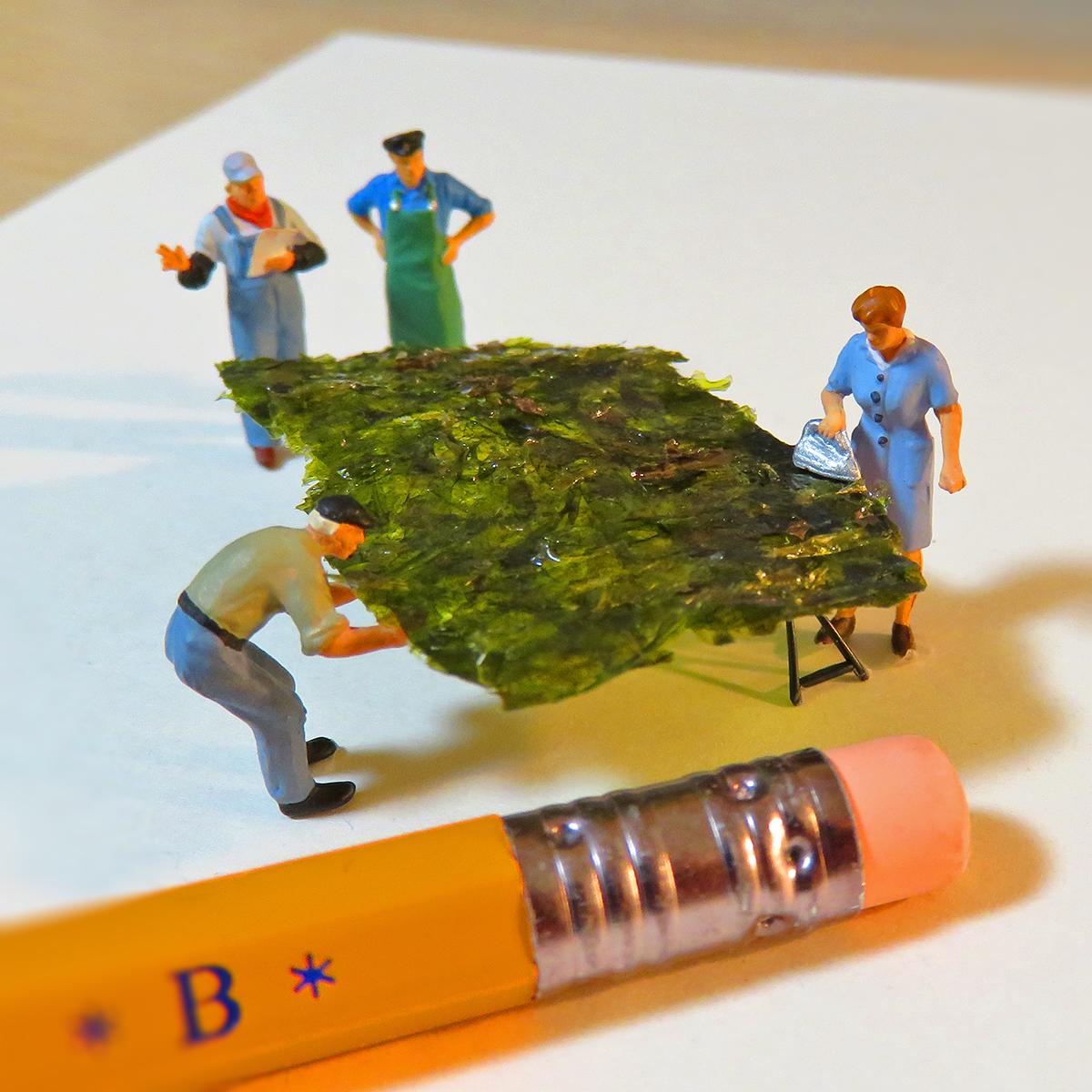 今日は海苔の日!アイロンで海苔をパリッと仕上げる女性と作業員