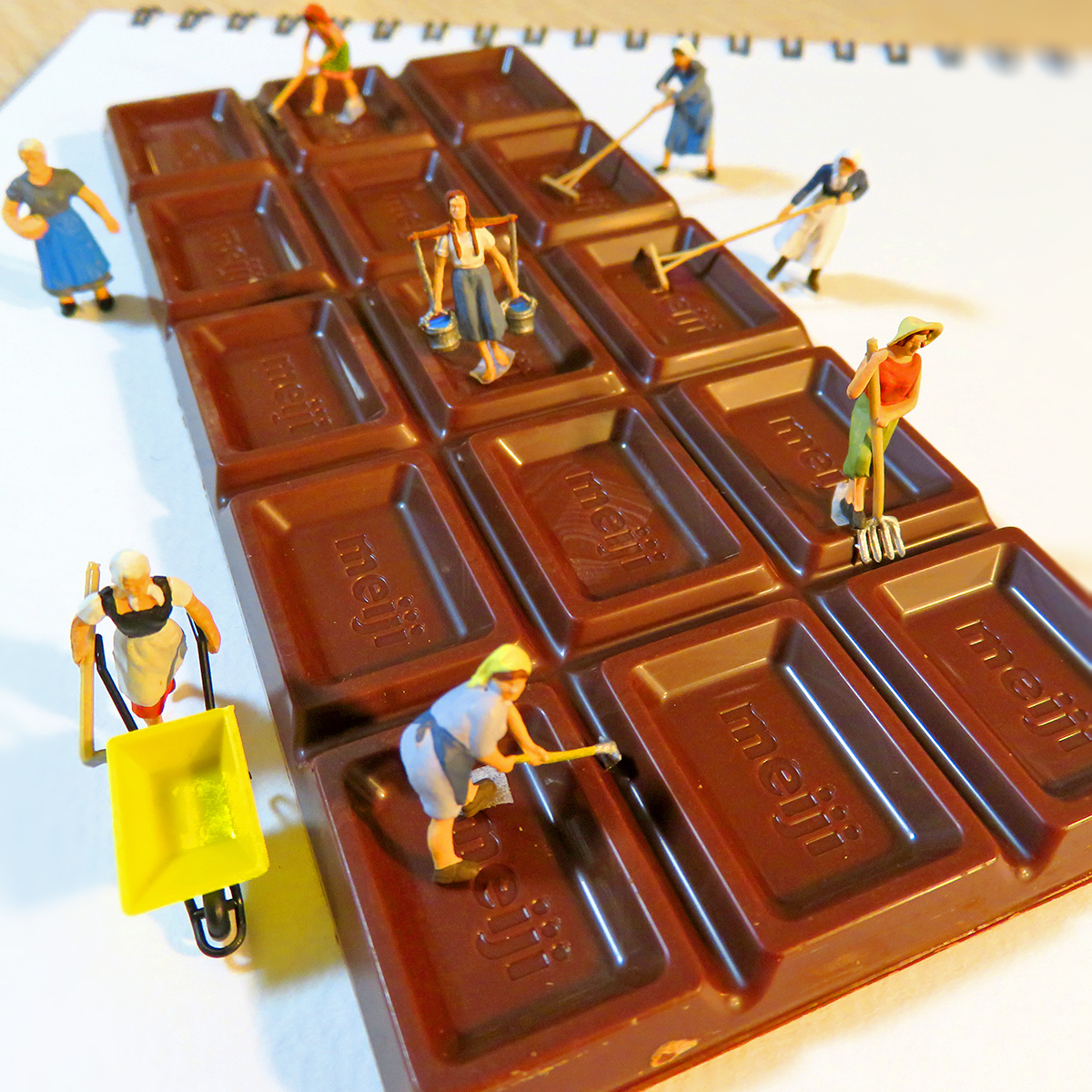 明日のバレンタインデーに向けて巨大な板チョコを作る農家の女性たち